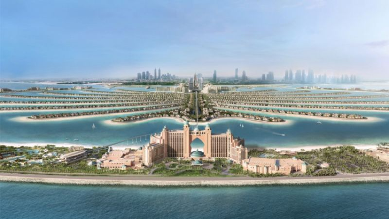 Atlantis_Palm