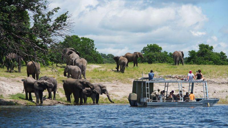 Botswana - 5* Zambezi Queen Safari Boat - 3 night getaway