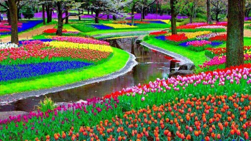 Koekoenhof_gardens
