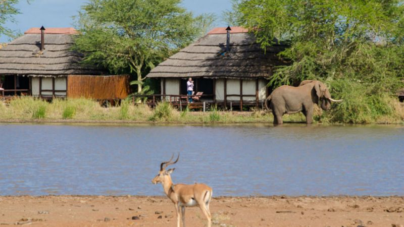 Kruger National Park - Shishangeni Private Lodge - 2 Nights
