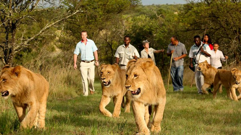 Limpopo - Protea Hotel Polokwane Ranch Resort - Family Offer