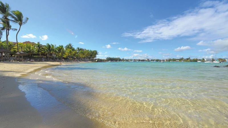 Mauricia)beachiu