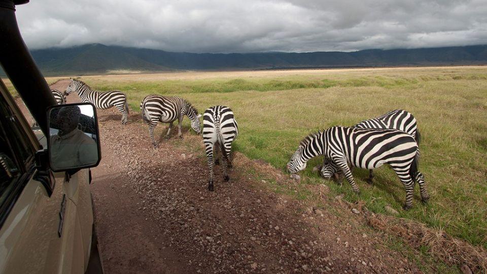 Nairobi to Zanzibar - Serengeti & Sunsets - Set Dep: 26 Nov & 10 Dec 2021