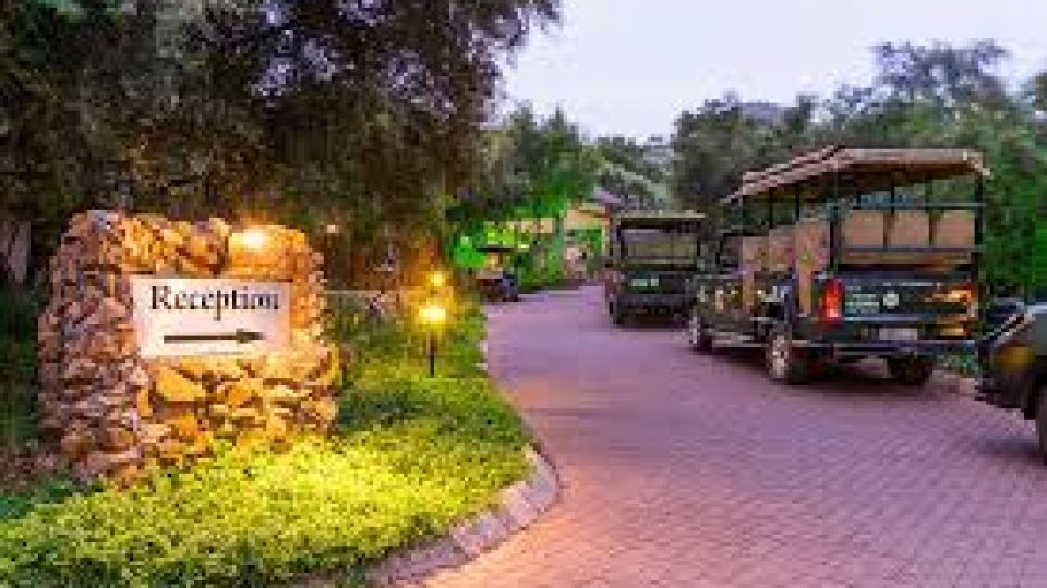 Pilanesberg - 4* Ivory Tree Game Lodge & Sun City Cabanas Combo - Valid: 23 to 28 Sep.21