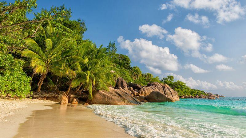 Seychelles_Coco