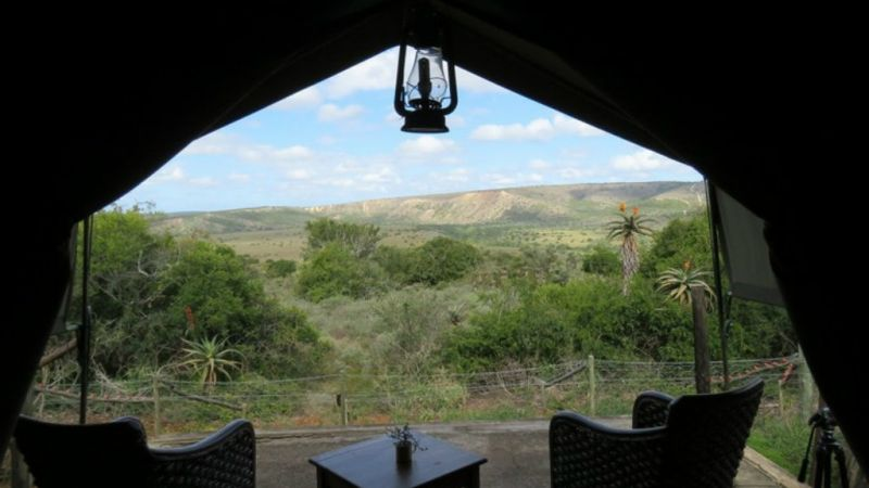 Photo of package Eastern Cape - Amakhala Woodbury Tented Camp - 2 Nights