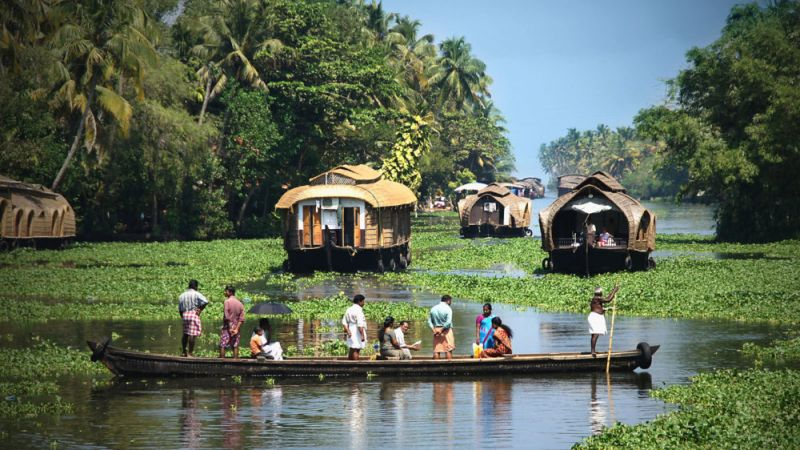 Photo of package Incredible India - Kerala Backwaters, Hills & Wildlife