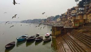 India - India River Cruise – Ganges Experience  - 9 Day Discounted Tour