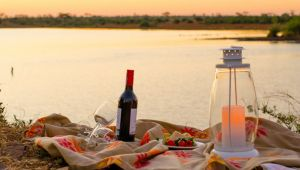 Kruger National Park - Shishangeni Private Lodge - 2 Nights