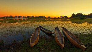Okavango and Chobe Trail - 9 nights - 20% Off - Set dep. 13 Apr.20