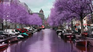 Europe's Romantic Cities by Rail - Amsterdam, Paris, Rome & Venice. 12 Nights - Land Only