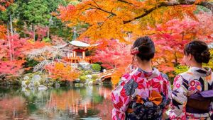 Asia - Highlights of Japan in Autumn from Tokyo - 9 Days