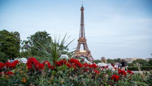 Cruise - Paris - Round - trip - 8 Days - Sails 22 Mar.20