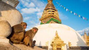 Highlights of Nepal - 9 day tour - Set dep. between Dec.20 & Feb.21