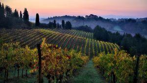 Italy - Cycling in Tuscany - 7 Days - Set dep. 09 May.21