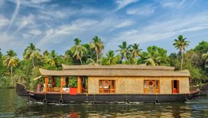 Captivating Kerala - 7 day tour - Set dep.12 Dec.20 - 1 Apr.21
