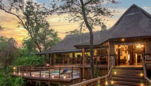 North West Province - 3* Madikwe River Lodge - 2 Night Getaway