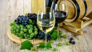 Wacky Wine Experience - Flexible Private Trip - Breede River Valley - 3 Days - Valid until 31 Oct.21