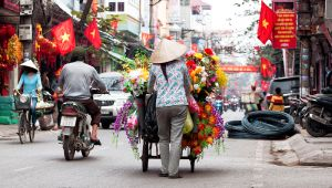 Vietnam - Best of North and Central Vietnam Eco Tour - 7 nights