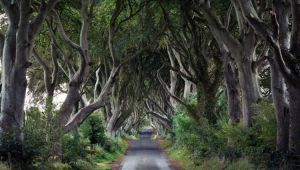 Game of Thrones Film Location Hotspots Self-Drive Tour