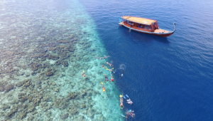 5* Cocoon Maldives - 15% Discount + Free Upgrade to Full Board plus