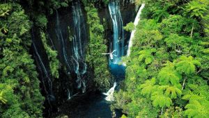 4 nights in Reunion Island
