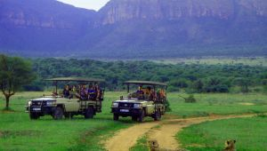 Entabeni Wildside Safari Camp - Waterberg - 2 Nights