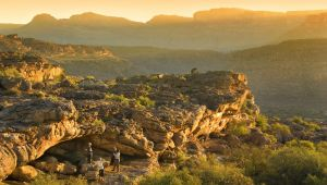 Western Cape - 5* 12 Apostles & Bushmans Kloof - 5 Night Honeymoon Combo