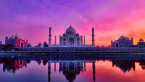 India - Taj Express Tour - Solo Traveller Offer - Set dep. - Jun & Aug.19