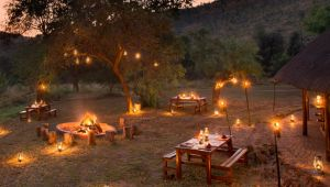 Thumbnail image for Bakubung Bush Lodge - Pilanesberg National Park - 4 nights - Valid: 1 Sep. to 31 Dec.20