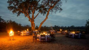 Kruger Park - 4* Protea Hotel by Marriott Kruger Gate - 3 Nights - Valid until 28 Aug.21