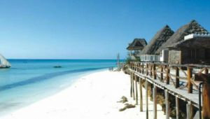 Zebras & Zanzibar - 2-FOR-1 Deal - 11 days