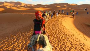 Thumbnail image for Moroccan Desert Adventure for travellers aged 18 to 39