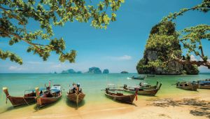 Thai Hopper 2019 - Koh Samui - Krabi - Phuket - 10 Days