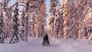 Finland - Finnish Lapland - 5 Days - Dec.19 - March.20