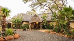 4* Mziki Safari Lodge - Winter Special - 2 Nights - Self Drive