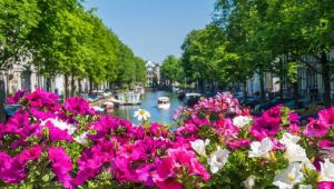 Thumbnail image for Amsterdam Explorer - 5 Cities - 1 Country - 6 Days
