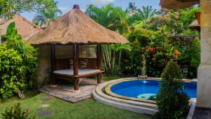 Bali - 4* Kuta and Ubud Combo - 7 nights
