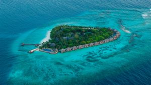 Maldives - Taj Coral Reef - 8 Days - Valid Apr to Sep.20