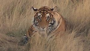 Karoo - 5* Tiger Canyon - 2 Night All Inclusive Weekend Stay - 45% Off - Valid: 7 Jan.21 – 22 Mar.21