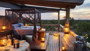 Timbavati Private Game Reserve - 4* Motswari Private Game Reserve -  2 Nights - Valid until 28 Sep.21