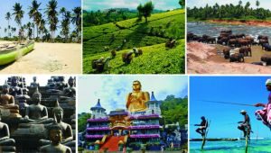 Sri Lanka - Touch of Paradise Tour - 6 Days