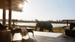 Botswana - 4* Belmond Eagle Island Lodge - 3 Nights