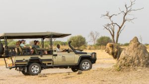 Ultimate Botswana - Savute, Moremi & Okavango Delta Safari - Valid until 17 Dec.21